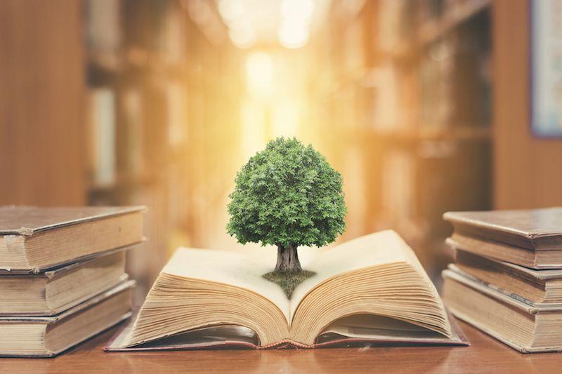 Philosophy-A-Level-Subject-Helps-Law-School-Program