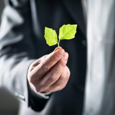 LLM Environmental Law Online