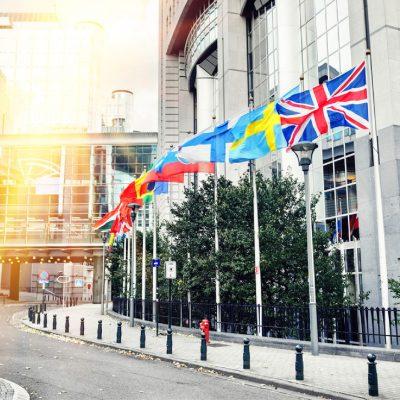 LLM International Business Law